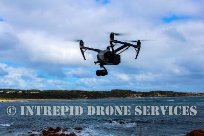 Intrepid Drone Services