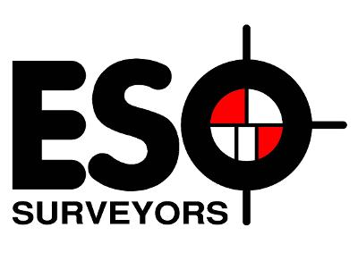 ESO Surveyors