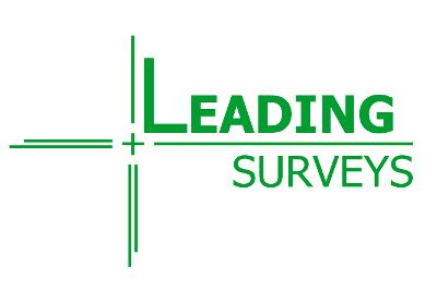 Leading Surveys